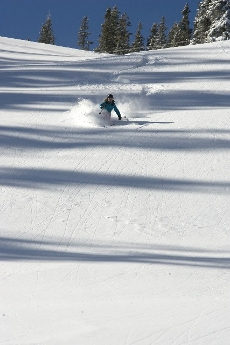 Powder Skiing Aspen Mountain