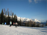 Skiing in Fernie Alpine Resort